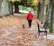Walking the dog Royalty Free Stock Images