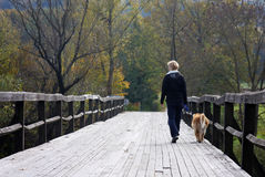 Walking the dog. Walking with the dog in autumn sun on the wooden bridge Stock Photos