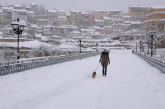 Walking the Dog in the Blizzard Royalty Free Stock Images
