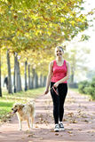 Walking with dog. Blond woman walking with her golden retriever dog in the park Royalty Free Stock Photography