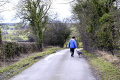 Walking the dog, Derbyshire. Stock Image