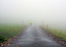 Walking Dog in Fog Royalty Free Stock Photography