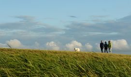 Walking with a dog - 3 friends in a meadow in Rugen stock illustration