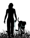 Walking with dog in the meadow. Detailed and colorful illustration of walking with dog in the meadow Stock Image