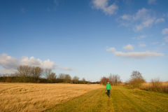 Walking the dog in nature Royalty Free Stock Photo
