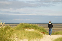 Walking the dog near the beach Royalty Free Stock Photos