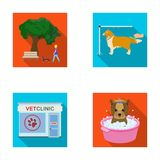 Walking with a dog in the park, combing a dog, a veterinarian`s office, bathing a pet. Vet clinic and pet care set. Collection icons in flat style vector symbol Royalty Free Stock Image