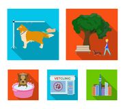 Walking with a dog in the park, combing a dog, a veterinarian`s office, bathing a pet. Vet clinic and pet care set. Collection icons in flat style vector symbol Stock Photography