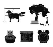 Walking with a dog in the park, combing a dog, a veterinarian`s office, bathing a pet. Vet clinic and pet care set. Collection icons in black style vector Royalty Free Stock Image