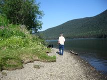 Walking the dog on the stony shore Stock Photography