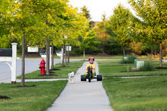 Walking the Dog with Tricycle in the Neighborhood Stock Photos