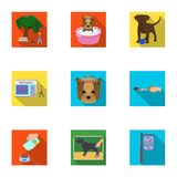 Walking with a dog, a vet clinic, a dog haircut, a puppy bathing, feeding a pet. Vet clinic and pet care set collection Royalty Free Stock Photos