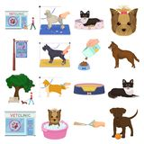 Walking with a dog, a vet clinic, a dog haircut, a puppy bathing, feeding a pet. Vet clinic and pet care set collection. Icons in cartoon style vector symbol Royalty Free Stock Photography