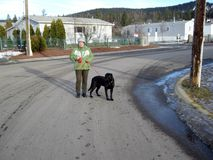 Walking the dog in  the winter time. Early winter, but dressed warmly Stock Image
