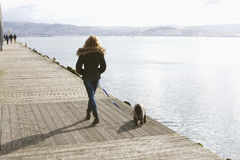 Walking the dog Royalty Free Stock Photos