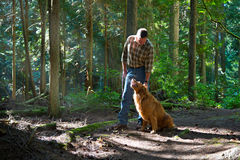 Walking the dog in the woods Royalty Free Stock Images