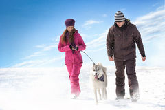 Walking with dog stock images