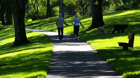 Walking The Dogs. A Senior Couple walking Their Dogs on the Scenic Stock Photo