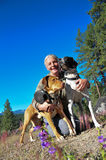 Walking Dogs Royalty Free Stock Photography