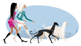 Walking dogs. Vector illustration of two girls walking dogs Royalty Free Illustration