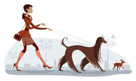 Walking dogs. Vector illustration of a girl walking two dogs stock illustration