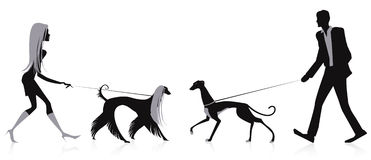 Walking dogs. Silhouettes of a man and a woman walking dogs royalty free illustration