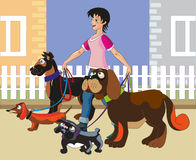 Walking of dogs. The young cheerful girl walks four dogs Stock Image