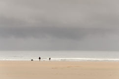 Walking the Dogs. Couple walking their dogs on a lonely beach Stock Images