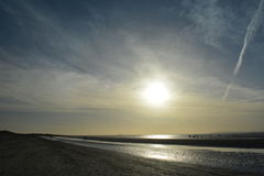 Walking the dogs. West Wittering, Sussex, England UK. Pilings and sun. Royalty Free Stock Photography