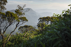 Walking down Adam`s Peak on Sri Lanka.  Royalty Free Stock Photos