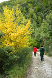 Walking down the mountain road. Boy and woman walking down a mountain road on a crisp fall day in central Italy Royalty Free Stock Photos