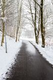 A winters day. Walking down the path in the snow Royalty Free Stock Photos