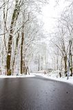 A winters day. Walking down the path in the snow Royalty Free Stock Images