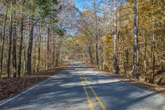 Fall Foliage Drive Through A North Mississippi Forest. Walking down a rural road during the fall foliage season in northeast Mississippi Royalty Free Stock Photos