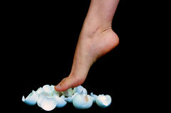 Walking on Eggshells Royalty Free Stock Images