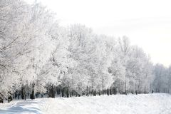 Walking embankment in Russian winter Royalty Free Stock Image