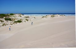 Walking the Eyre Peninsula dunes. A father and sun walking across the rolling sand dunes at the entrance to the Port Lincoln National Park, Eyre Peninsula ( Stock Photo