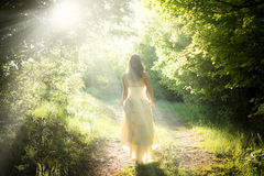 Walking fairy. Beautiful young woman wearing elegant white dress walking on a forest path with rays of sunlight beaming through the leaves of the trees Royalty Free Stock Photos