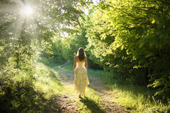 Walking fairy Royalty Free Stock Image