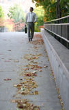 Walking in fall. Young businessman walks down leaf covered sidewalk Royalty Free Stock Photo