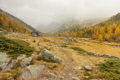 Walking at fall in a cloudy day in a mountain valley royalty free stock image