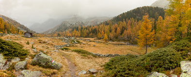 Walking at fall in a cloudy day in a mountain valley stock photos