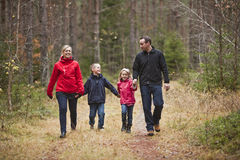 Walking Family. Family walking in the woods royalty free stock photo