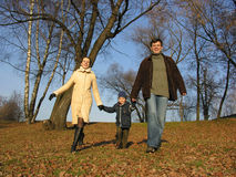 Walking family. wood. Stock Photo