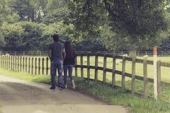 Walking in the farm Royalty Free Stock Photo