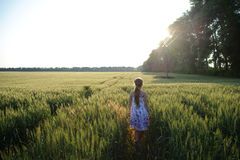 Walking in the field stock photography
