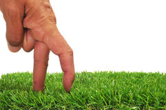 Walking fingers. A man hand with its fingers simulating someone walking or running on the grass Stock Photography