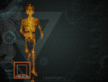 Walking fire skeleton by X-rays on backgroun. 3d illustration of  walking fire skeleton by X-rays on background Royalty Free Stock Photo