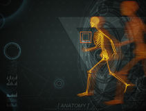 Walking fire skeleton by X-rays on backgroun. 3d illustration of  walking fire skeleton by X-rays on background Stock Images