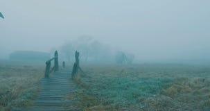 Walking on Fog Wood Path